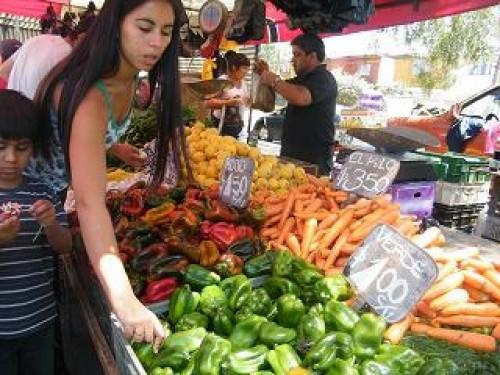 Parte caravana de las ferias libres al Bíobío con 22 toneladas de alimentos