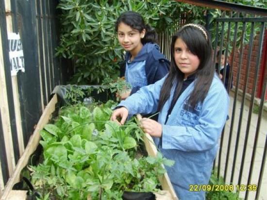 Niños ¡Al Huerto!