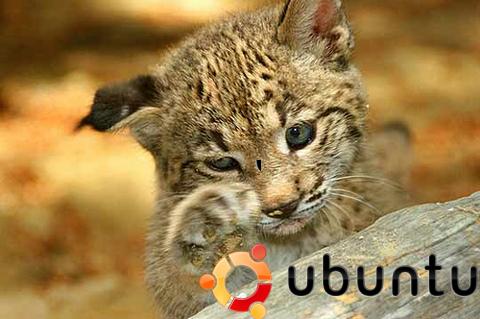 Ubuntu ya disponible en su nueva versión 10.04