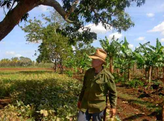 X Congreso: Este fin de semana campesinos cubanos debatirán sobre sus desafíos