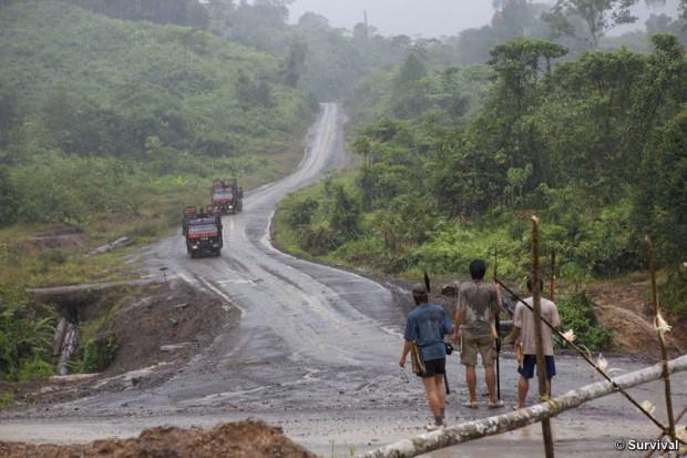 Tribus indígenas protestan por invasión de grandes empresas