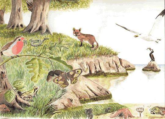 Ecosistema y Bien Común