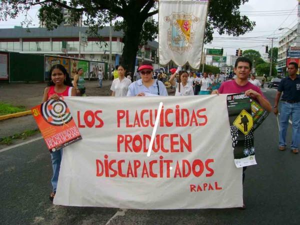 Informe llama la atención sobre los perjuicios causados por pesticidas