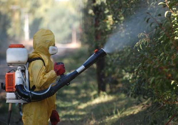 Vecinos de Longaví sufren por agroquímicos