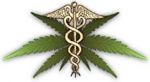 Marihuana tiene un «potente efecto» antitumoral en un tipo de cáncer de mama