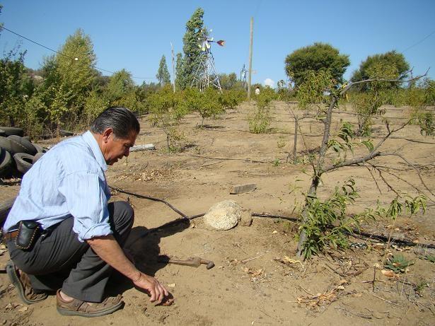 "Comunidades agrícolas de Coquimbo pedirán al Congreso ""reforma constitucional del agua"""