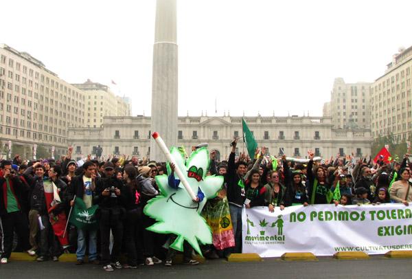 ¿El gobierno de Bachelet se la jugará por despenalizar el cannabis?