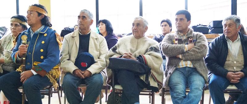Chiloé: Williches rechazan privatización de recursos y megaproyectos