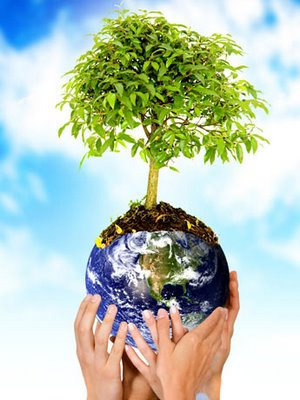 Sociedad y medio ambiente; una perspectiva de la crisis hídrica de la Región de Atacama