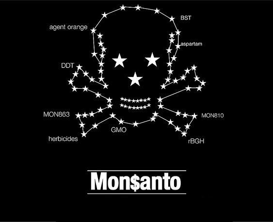 Campaña internacional pide frenar fábrica de semillas mutantes de Monsanto