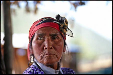 Nicolasa Quintremán, símbolo de la resistencia mapuche contra el poder de ENDESA (VIDEO)