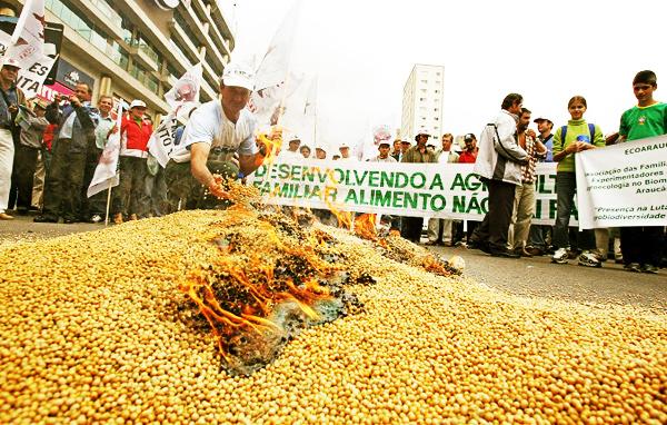 Brasil: Monsanto enfrenta demanda de agricultores por 1 billón de dólares