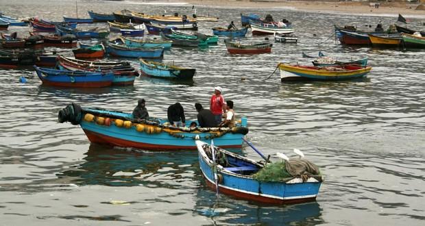 Acusan perjuicios por Ley de Pesca y advierten movilizaciones
