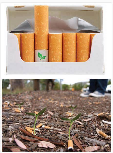 Cigarros con filtros biodegradables rellenos con semillas silvestres