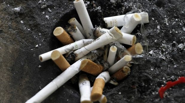 Colillas de cigarros se convierten en abono