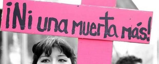 Ministra del Sernam invocará a plan de acción en violencia intrafamiliar ante últimos femicidios