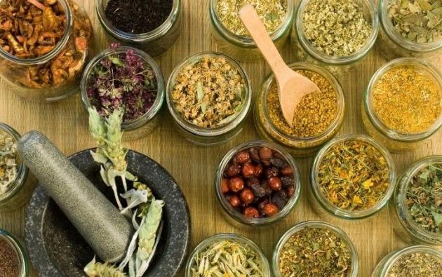 Medicina Natural: plantas y frutos que deberías tener en tu botiquín alternativo