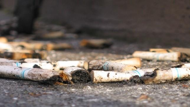 Nueva Orleans convierte las colillas de cigarrillos en abono y dinero