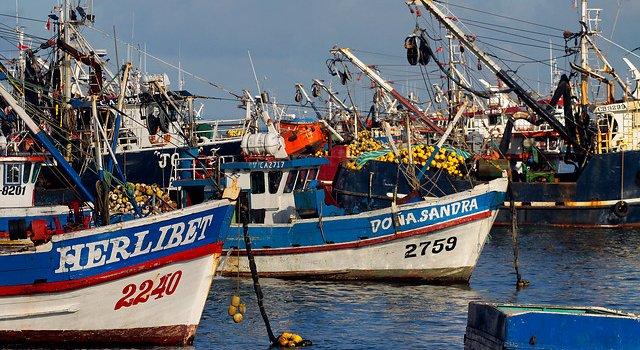 Pescadores artesanales del sur exponen ante comisión de Pesca de la Cámara
