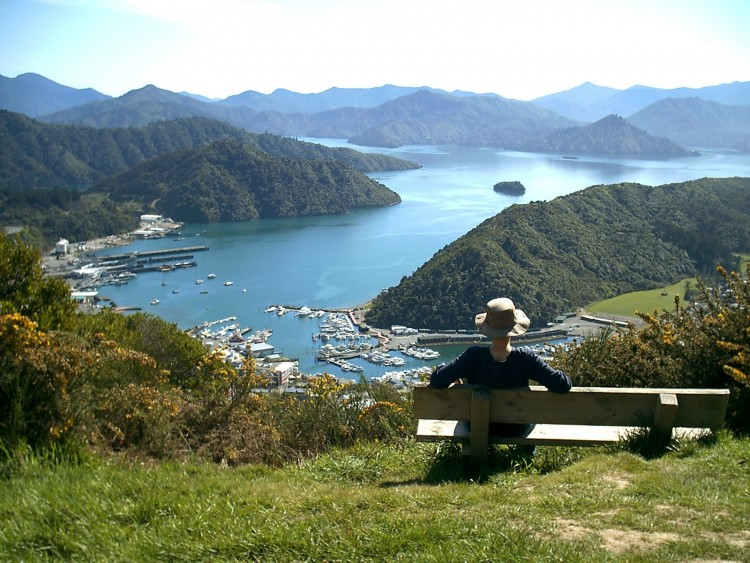 view-from-tirahanga-Picton