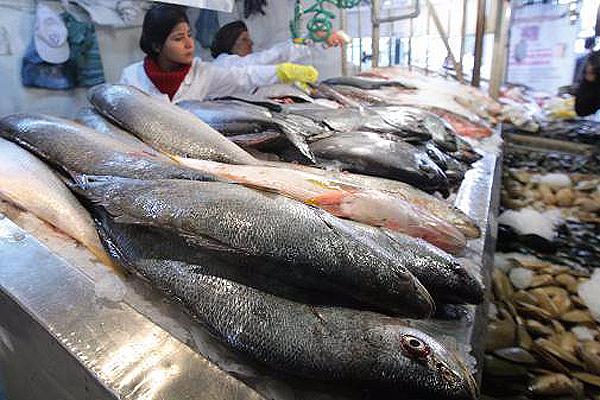 Norma chilena permite 50% más mercurio en pescados que el nivel considerado perjudicial para la salud