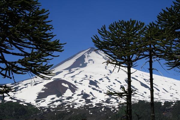 El Chile que añoro
