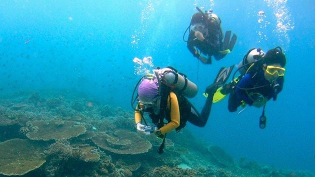 Crean un material que permite respirar bajo el agua