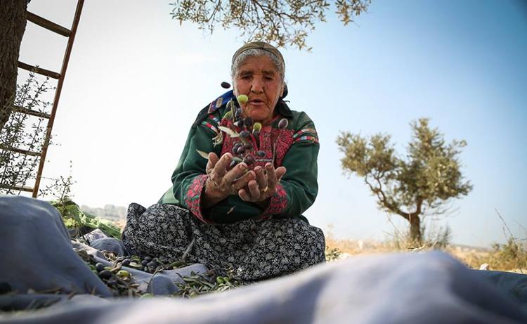 Palestina: 'Una mano Planta Una mano resiste'
