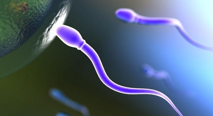 El gran problema de la infertilidad