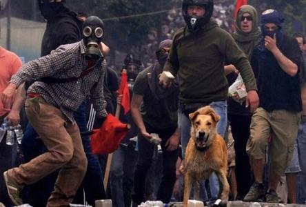 Estudiantes griegos ocupan más de 500 escuelas en rechazo a recortes en el sector
