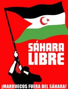 """""""Los saharauis se ofrecieron para luchar contra la tiranía de Pinochet"""""""