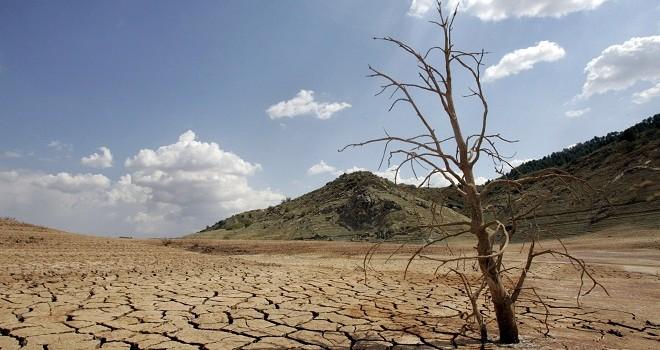 20 comunas declaradas zona de catástrofe por sequía