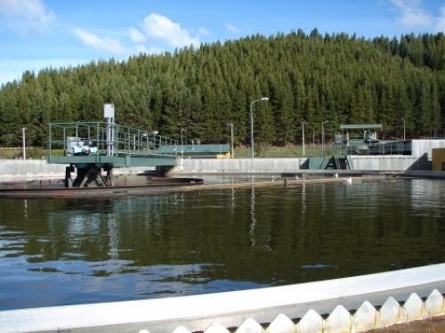 SISS instruye a Aguas Patagonia por emanación de olores en planta de tratamiento