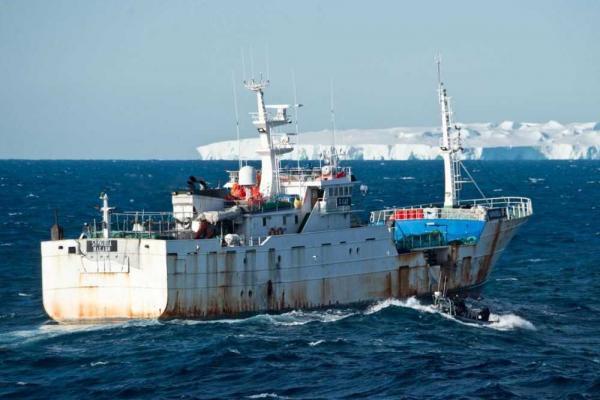 "Localizan navíos ""españoles"" que pescan ilegalmente merluza en la Antártica"