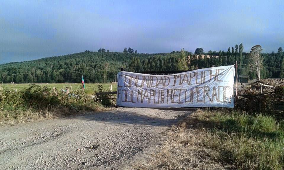 Comunidad Folil Mapu denuncia violento desalojo de Fundo Porvenir