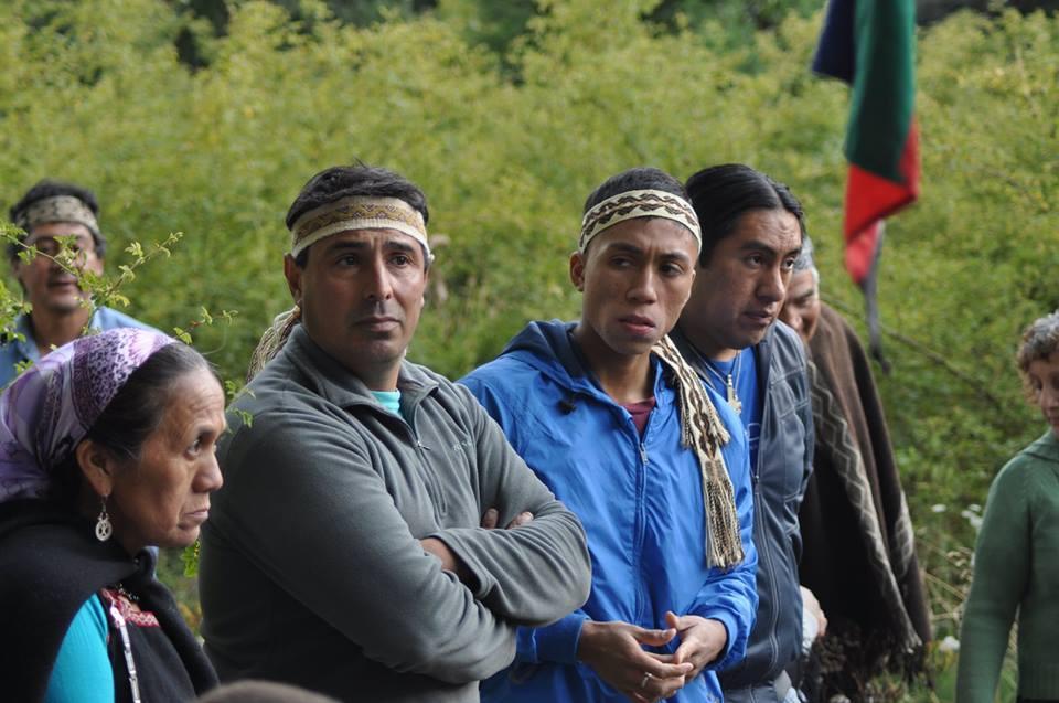 Comunidad Paicil Antriao inicia recuperación de su territorio histórico
