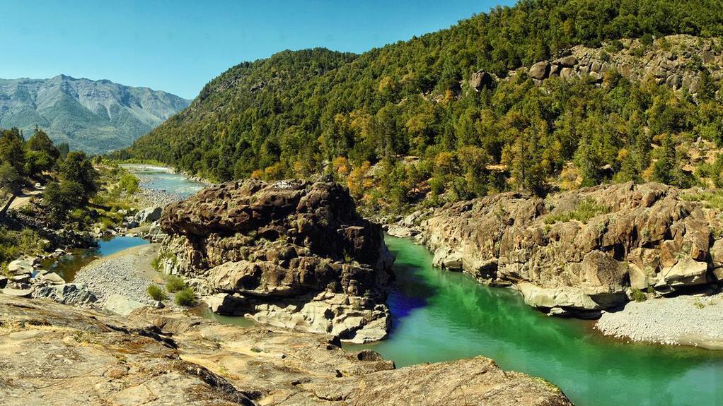 Denuncian tala ilegal de bosque nativo por construcción de hidroeléctrica en Ñuble