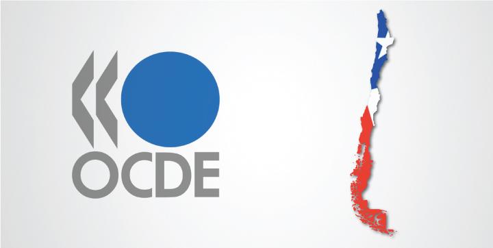 """OCDE: """"El mercado laboral chileno se caracteriza por fuertes desigualdades"""""""