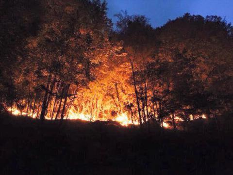 Urgente: Campaña de ayuda ante megaincendios forestales en bosque nativo