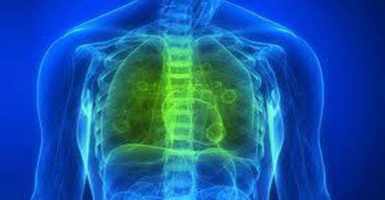Cómo limpiar sus pulmones de Nicotina, Alquitrán y demás subproductos del tabaco