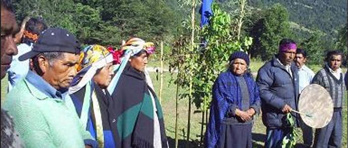 Familias mapuches recuperan complejo sagrado compuesto por espacios ceremoniales ancestrales