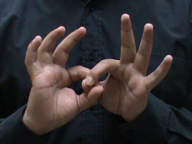 Comisión aprueba la incorporación del lenguaje de señas en programas musicales en televisión