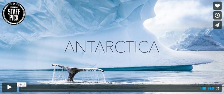Hielos milenarios y ballenas en la Antártica: impresionante video realizado con un dron