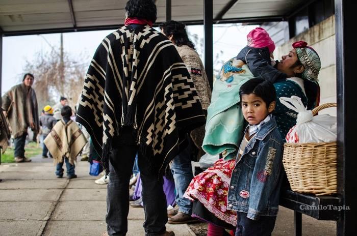 Más de 700 personas participaron de ceremonia ancestral en apoyo a presos políticos mapuche