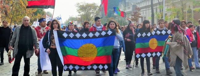 Las demandas de la Federación Mapuche de Estudiantes que no están dentro del petitorio nacional