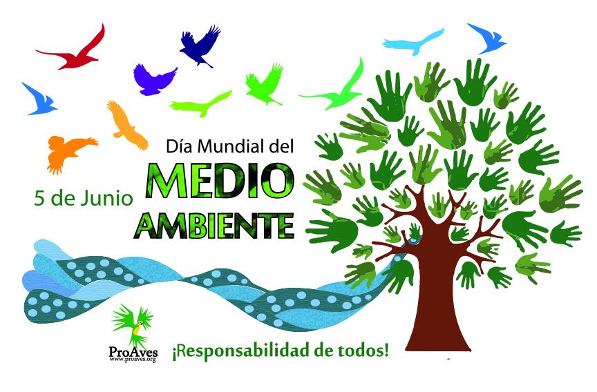Día Mundial del Medio Ambiente: La Ligua, capital contra el cambio climático en Chile