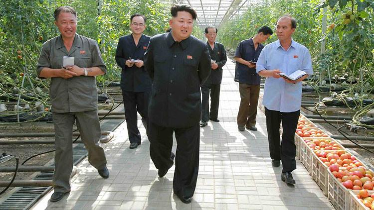 Corea del Norte no renunciará a su armamento nuclear para dialogar con EE.UU.