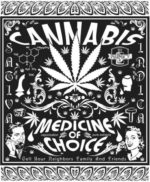 Marihuana, ¿el antibiótico del futuro?