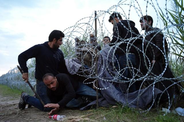 Crisis migratoria en Europa: Hungría despliega más de dos mil policías en la frontera con Serbia
