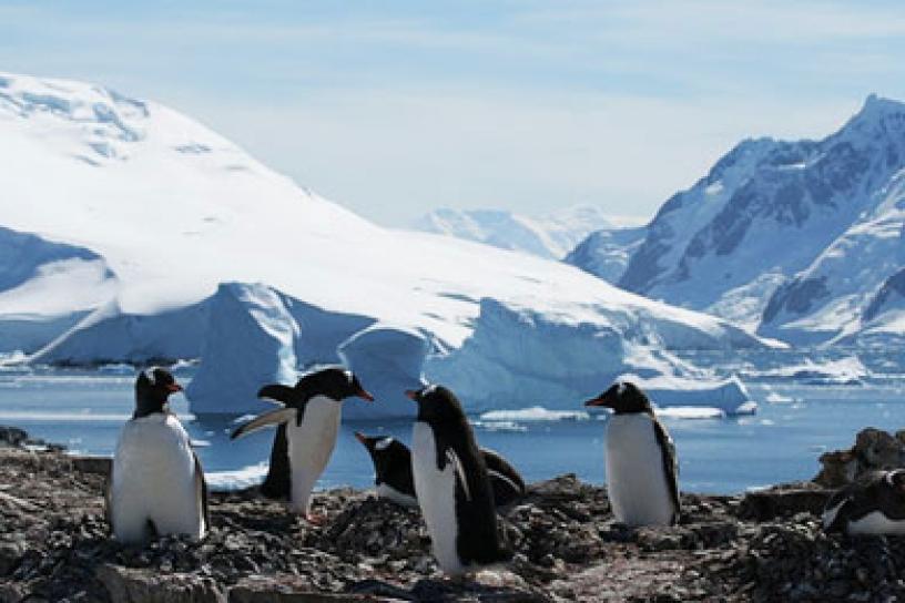 La Tierra se quedó sin reservas para mantener el equilibrio ecológico durante este 2015